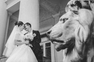 Львы у Дворца