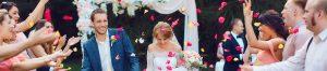 Отзыв о свадьбе Дмитрия и Алены шатер у дворца