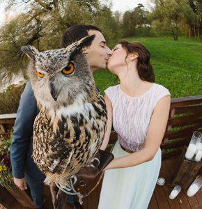 Свадьба на веранде у пирса портфолио