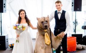 Медведь на свадьбе Насти и Артема