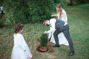 Посадка дерева на свадьбе традиции